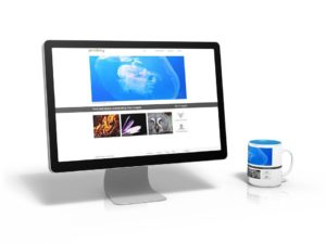 Screen showing images on Pixabay - one of many sites for free images.