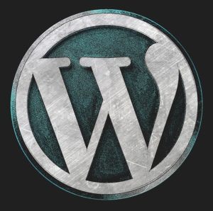 WordPress logo - consider the best software for your website.