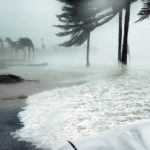 How are hurricanes affecting freight forwarders