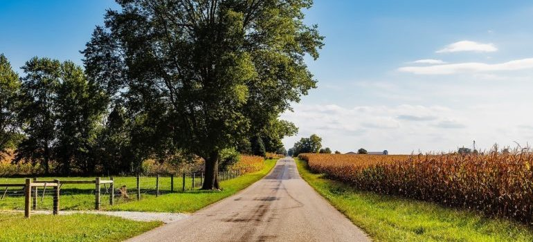 A road in Indiana, a state where one of the best US cities for moving with family is located.