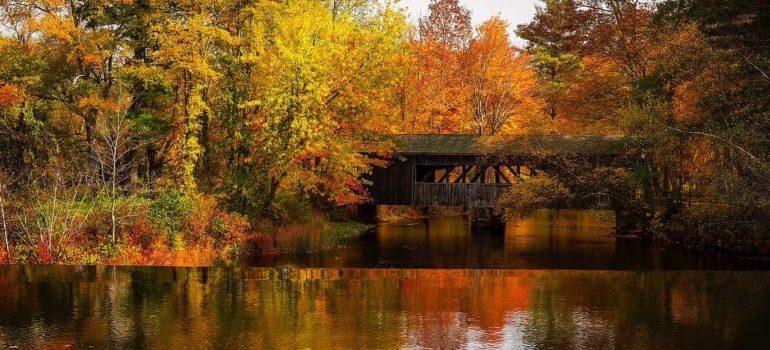 The beautiful nature of Massachusetts.